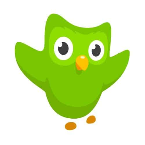 duo_owl_logo