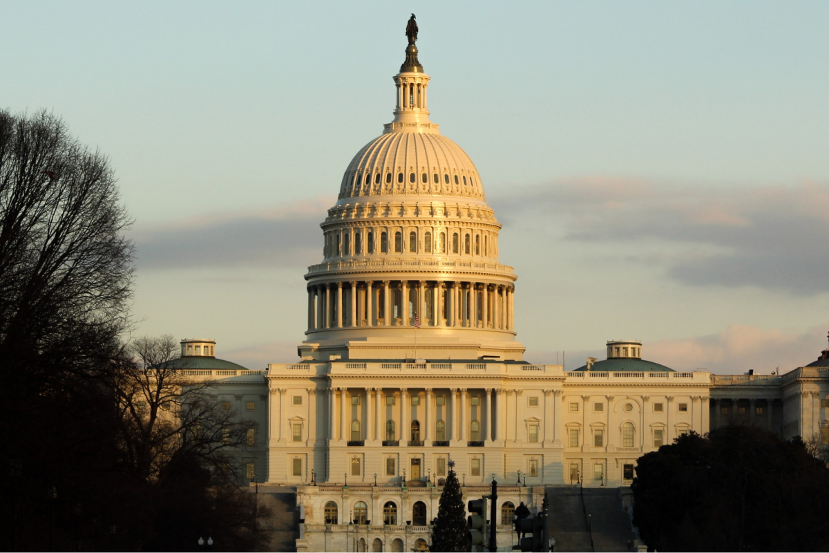 The Capitol building in Washington DC.